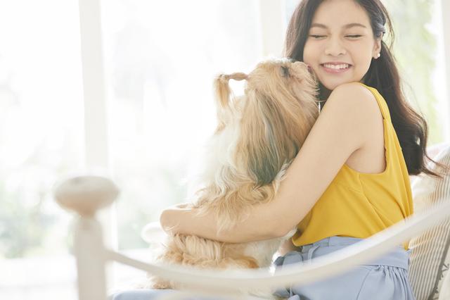 【獣医が解説】犬のしつけは何歳から?いつまでに?知っておきたいしつけの基本